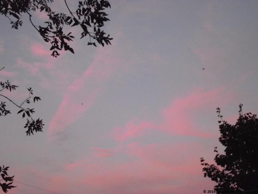 2016-09-sky02-copy